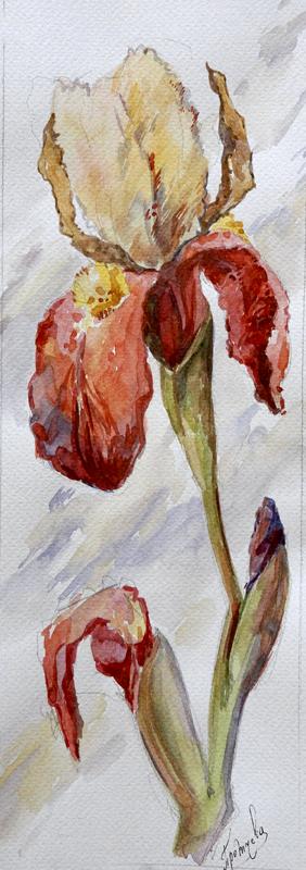 Этюды акварелью цветы поэтапно
